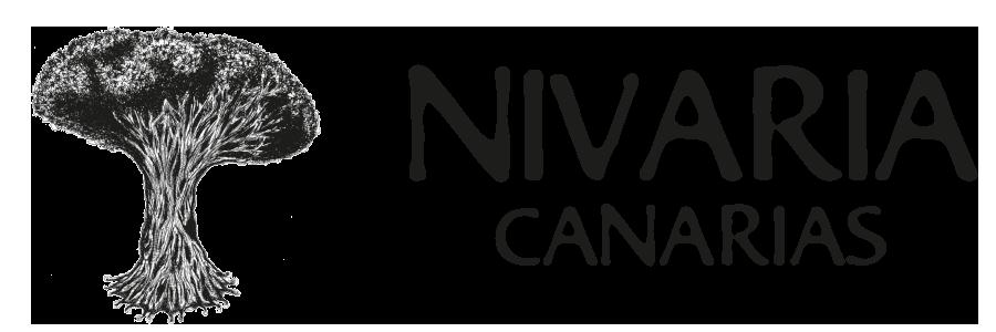 Nivaria Canarias